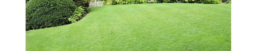 Ψαλίδια γκαζόν | εργαλεία κήπου |  χλοοκοπτικά | εργαλεία | χορτοκοπτικά | ψαλίδια