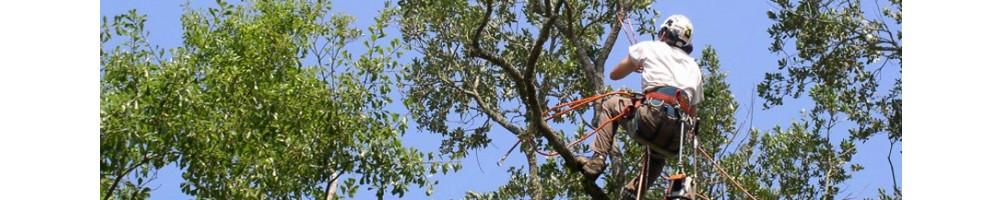 Φροντίδα δέντρων | ψαλίδια | ηλεκτρικά ψαλίδια | κλαδευτήρια χειρός | αλυσοπρίονα | πριόνια