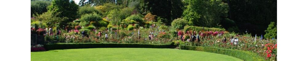 Εργαλεία κήπου | χλοοκοπτικά | χορτοκοπτικά | ψαλίδια | κλαδευτήρια | πριόνια